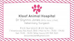Kloof Animal Hospital